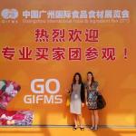 gifms-100ita
